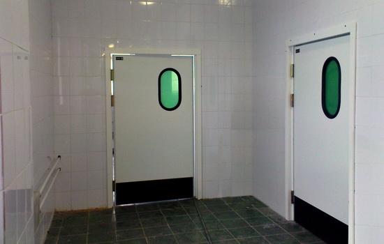 Маятниковые технические двери