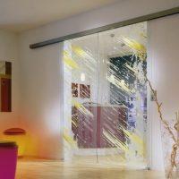 Стеклянные двери с рисунком. Виды и способы нанесения изображений